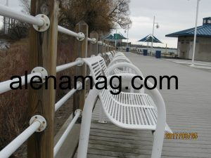 the bench at the pier